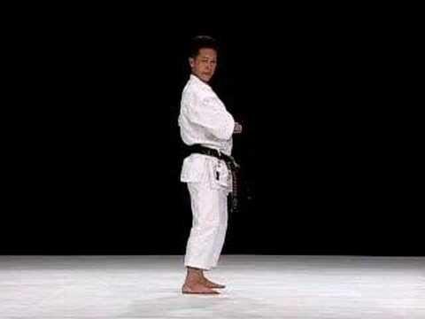 Kata Bassai Dai de la escuela Shito Ryu, por Yukimitsu Hasegawa.