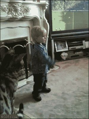 Seriously, all cats are jealous of kids.