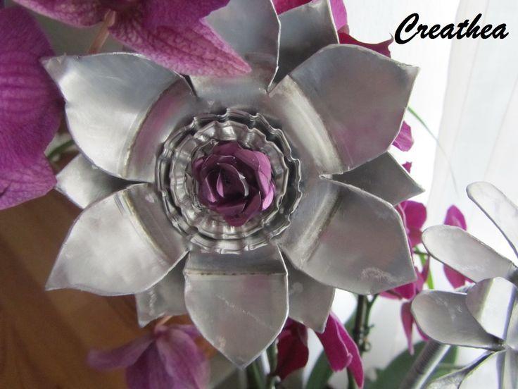 Fiore dei filtri di Espresso.Bialetti e Nespresso