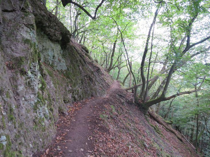 Spartacus-ösvény, Apát-kúti-völgy