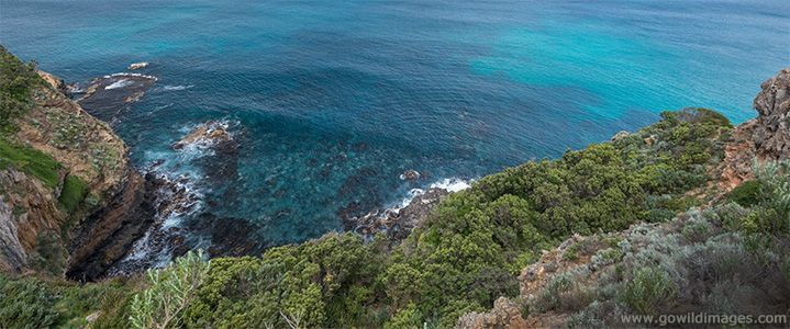 Parks Victoria - Discovery Bay Coastal Park