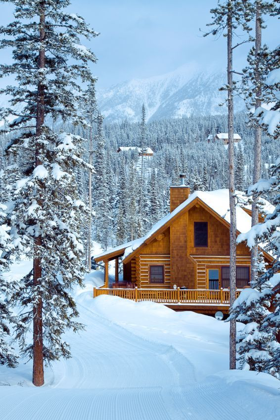 nothing so beautiful as the silence of a snow covered ForLake Tahoe Winter Cabin