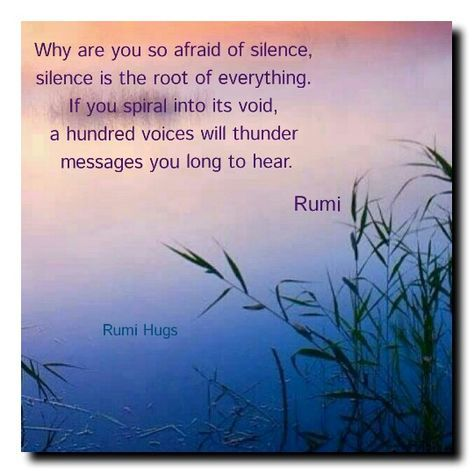 Why are you so afraid of silence? Silence is the root of everything. If you spiral into its void, a hundred voices will thunder messages you long to hear. Beloved Rumi/Rumi Hugs page