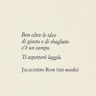 #citazione #rumi