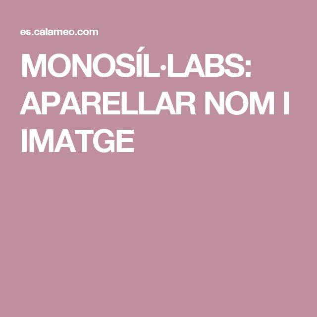 MONOSÍL·LABS: APARELLAR NOM I IMATGE