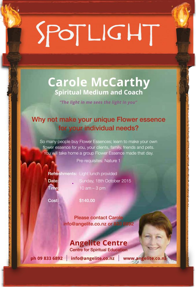 Carole  McCarthy, Spiritual Medium and Coach Learn how to create your own Flower Essences with Carole.  #Floweressences #CaroleMcCarthy #Medium #Coach