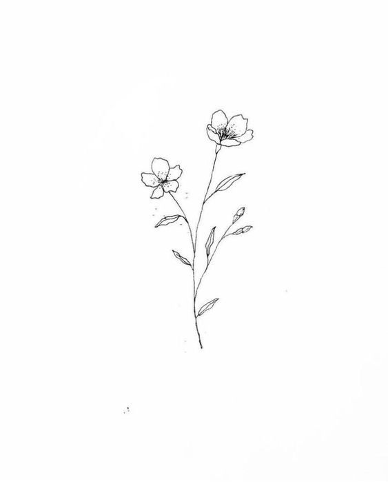 30 Ways To Draw Flowers In 2020 Simple Flower Tattoo Flower Drawing Beautiful Flower Drawings