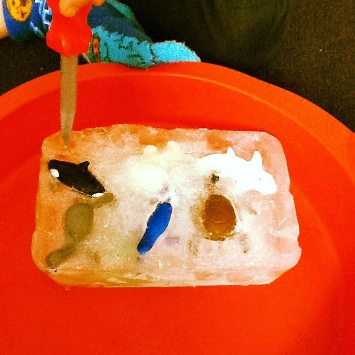 Vriendjes bevrijden uit ijs