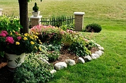Landscaping with rocks. plants-flowers-landscaping