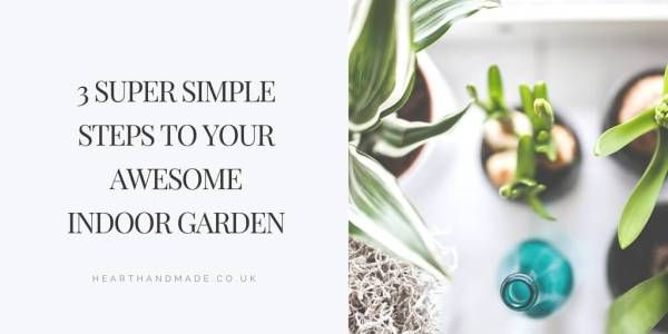 3 Super Simple Steps To Your Awesome Indoor Garden