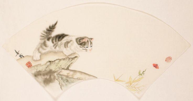 Cats - CNAG001464