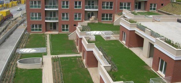 Sel Riskine Önlem Olarak Yeşil Çatılar