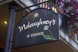 Overview - Moloughney's - Clontarf, Dublin 3