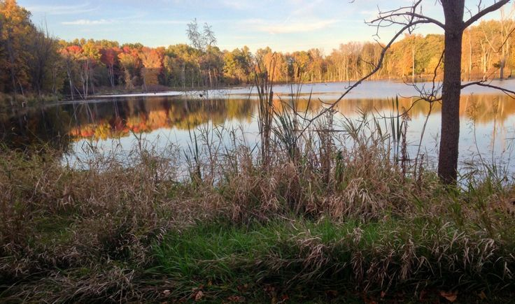 Potato creek is in north central indiana about 12 miles for Potato creek cabins