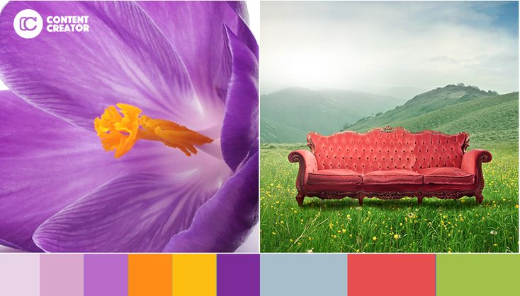 Picking A Color Palette: 5 Beautiful Ideas For Your Next Social Media Design