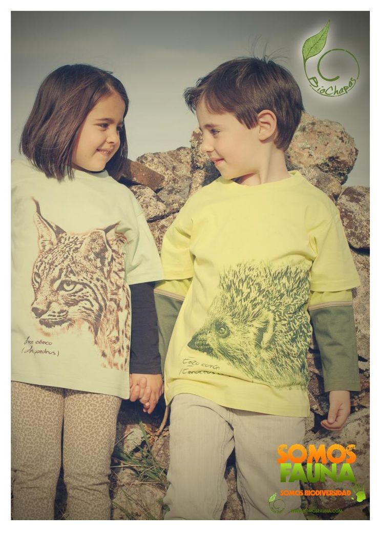 Camisetas -Lince Ibérico - Erizo común - Manga corta - SomosFauna - Color verde pistacho - Color gris jaspeado