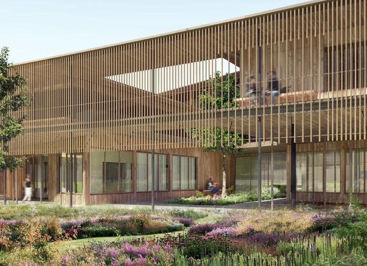 Herzog & de Meuron . Children's hospital . Zurich  (2) presentatie render gaanderij tuin planten bloemen hout patio Tilia
