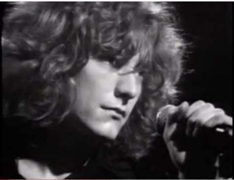 Robert Plant Gif 7 by pflzrp