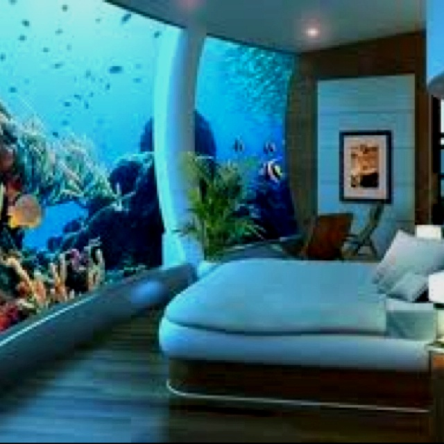 My Dream Room 3