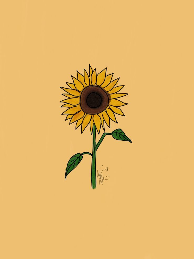 Flower Sunflower Art Artist Aesthetic Sunflower Wallpaper Iphone Wallpaper Yellow Sunflower Art