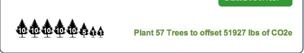 FOOTPRINT #2  If I plant one tree per year, I might offset all my CO2!!!