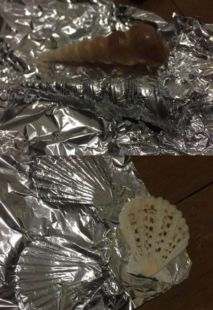 Experimentation using Aluminium foil and a shell, pressed into foil to create the shape of the shell.