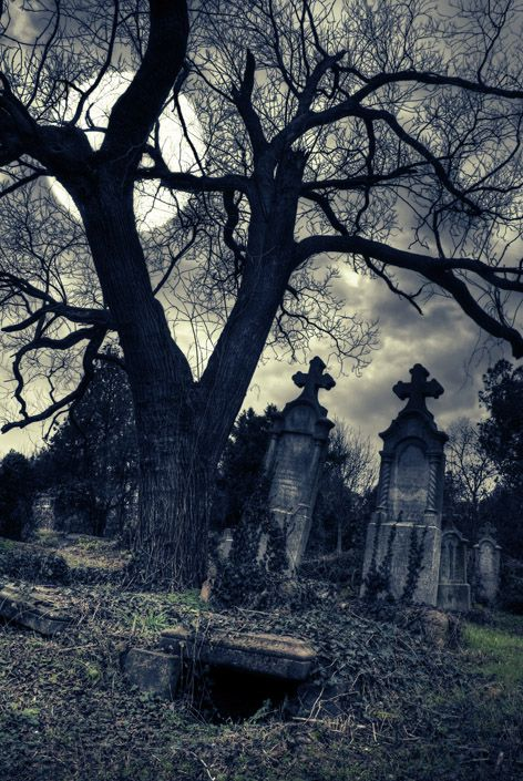Old Graveyard.... IF i could get my friend to go with me for a photoshoot.