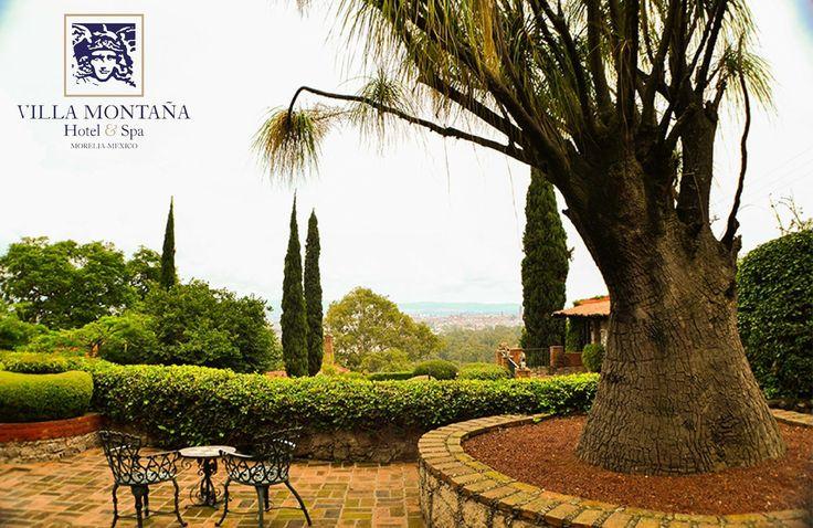 Él es Sebastián, una pata de elefante que tiene más de 470 años y pesa 3 toneladas. Llegó a Villa Montaña desde Guerrero para pintar de extraordinarios nuestros paisajes, visítalo.  #HotelVillaMontaña #DescubreVillaMontaña