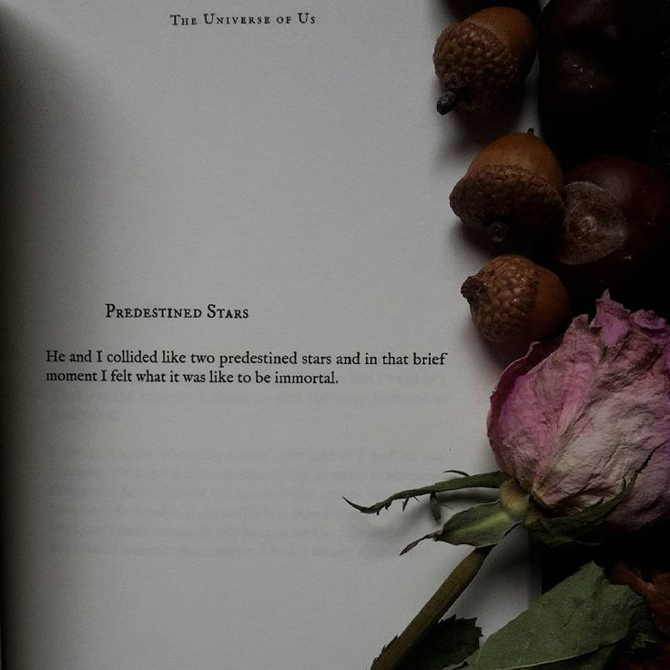 Obsessed with my poetry books again lately. Lang Leav ...