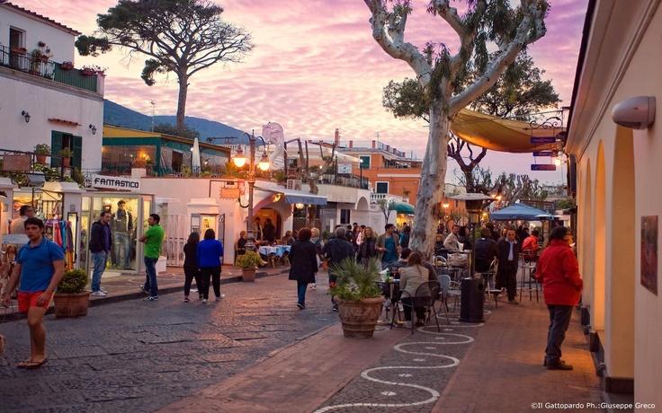 Corso V. Colonna - Ischia - Il Gattopardo Hotel Terme & Beauty Farm