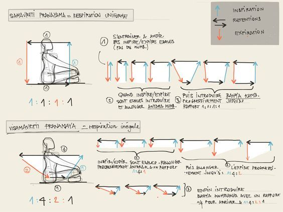 les 20 meilleures images du tableau pranayama sur pinterest pranayama exercices et m ditation. Black Bedroom Furniture Sets. Home Design Ideas