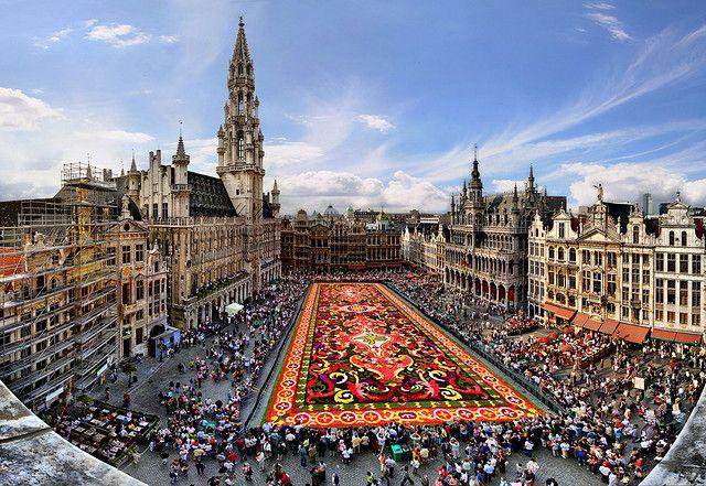Carpet flower, Great Market, Brussels, Belgium by Batistini Gaston, via Flickr