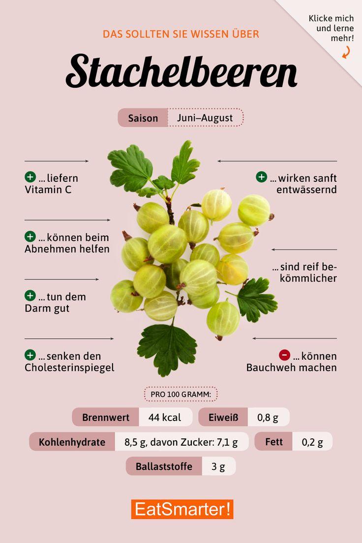 Stachelbeeren – Merry Rosemarry