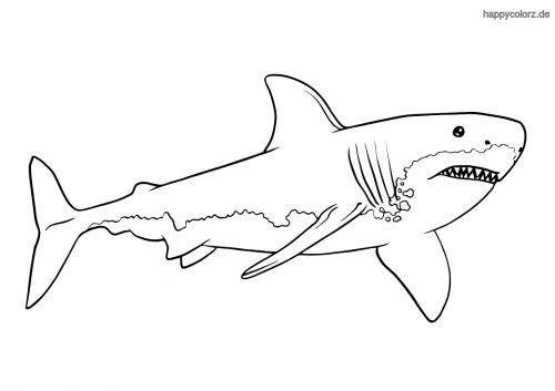 weißer hai ausmalbild  ausmalen zootiere ausmalbilder