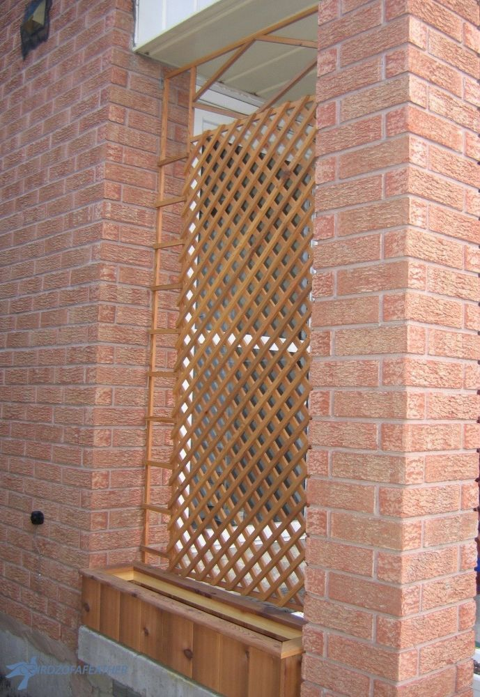 37 Best Images About Privacy Screen Trellis On Pinterest