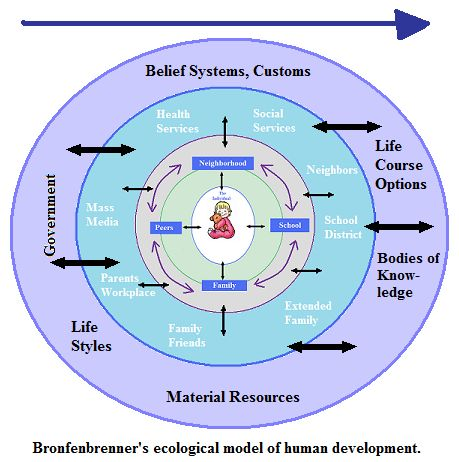 the bioecological model of human development pdf