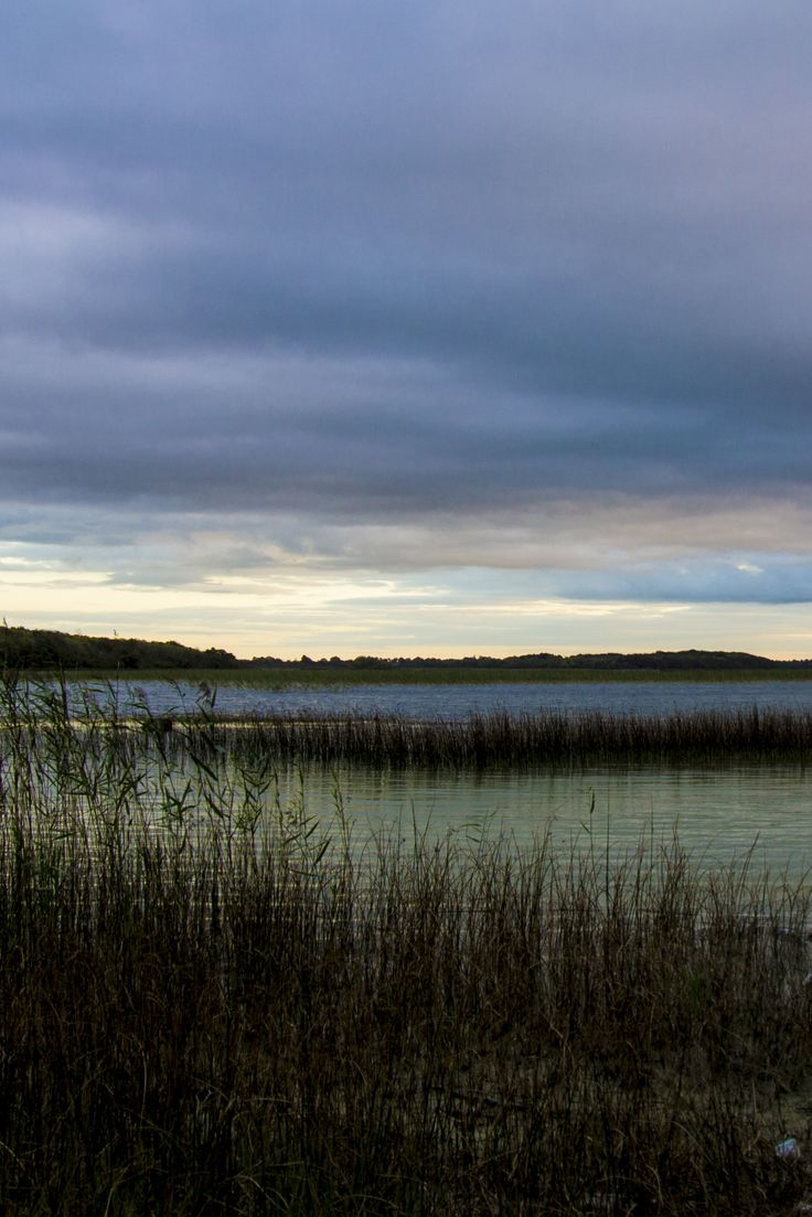 Ireland's potential lies in its unique countryside.  The wild beauty and spaciousness of local landscapes of Ireland could entice people from other countries to move and set up businesses here.