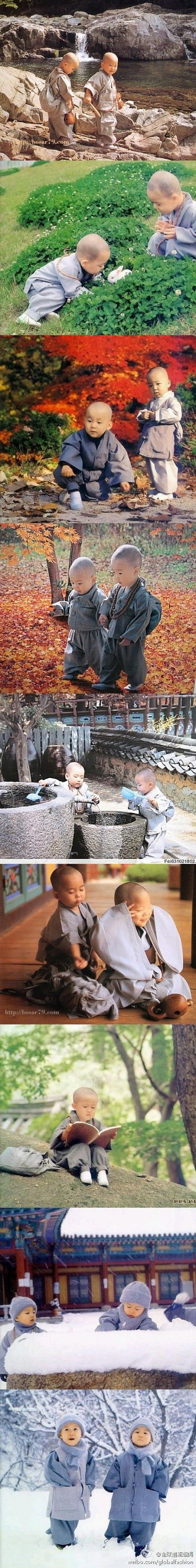Just my opinion, but for what it's worth: I object to children being raised like this. They haven't even had a chance to experience life yet. They aren't old enough to make their own choices about what they want out of life. Buddhist monks may do good in the world (I'm not that familiar with their doings), but this just seems so wrong to me (mkc). Pin from Chikako Asai.