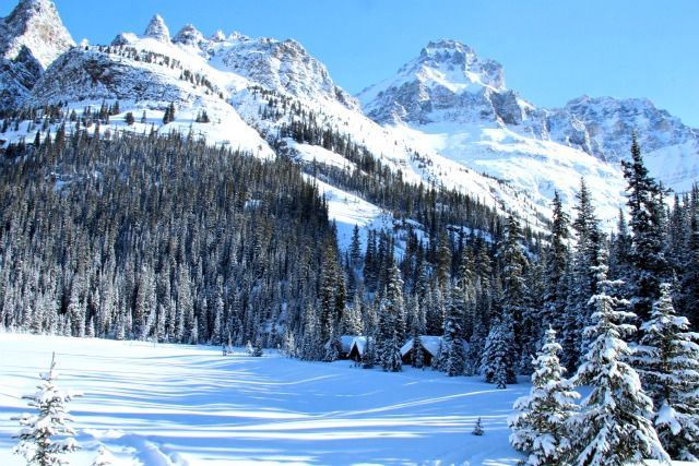 Lake O'Hara's lakeside cabins in a pristine mountain setting - you can ski in here in the winter