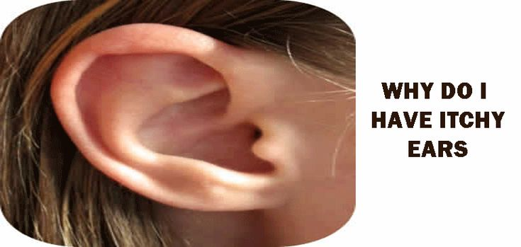 """Why+do+I+have+itchy+ears?  Itchy+ears+can+signify+an+imbalance+in+your+lymph+tissue.+Lymph+is+the+blood+plasma.+When+we+have+itchy+ears,+we+might+also+have+the+following+symptoms+if+our+blood+plasma+is+acidic.+Other+symptoms+might+include:    [caption+id=""""attachment_6703""""+align=""""alignright""""+width=""""168""""]"""