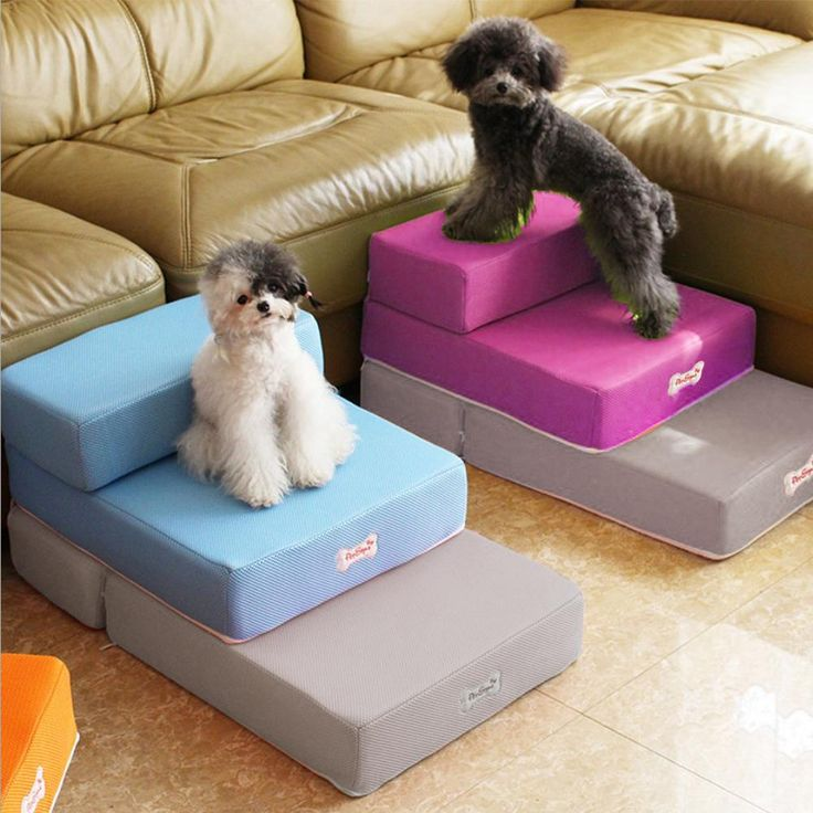 PetStbuyl Foldable 2 Step Pet Bed/Staircase in 2020 Pet