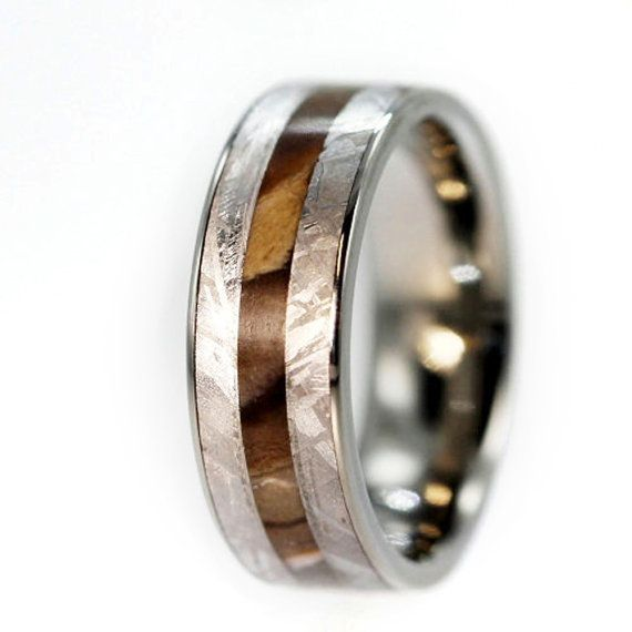 arcadia wedding band. petrified wood ring, gibeon meteorite overlaid on a titanium wedding band, fossil jewelry arcadia band l