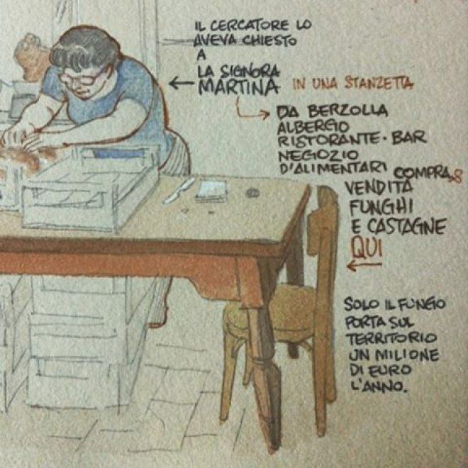 """I """"Disegnatori in cammino"""" a Borgotaro per la Fiera del fungo. Al Museo delle…"""