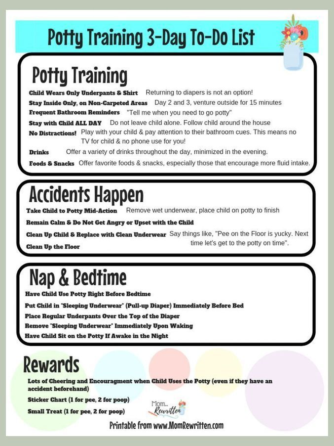 Potty Training A Toddler Tips For Potty Training In Three Days Puppy Potty Training Tip In 2020 Puppy Potty Training Tips Puppy Toilet Training Potty Training Puppy