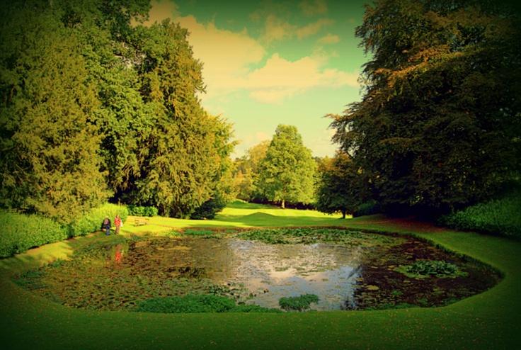 22 plain garden design courses in dorset for Landscape design courses