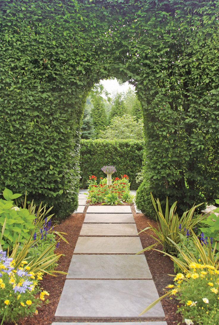 Garden Design Hedges 571 best gardening - hedges images on pinterest | hedges, bespoke