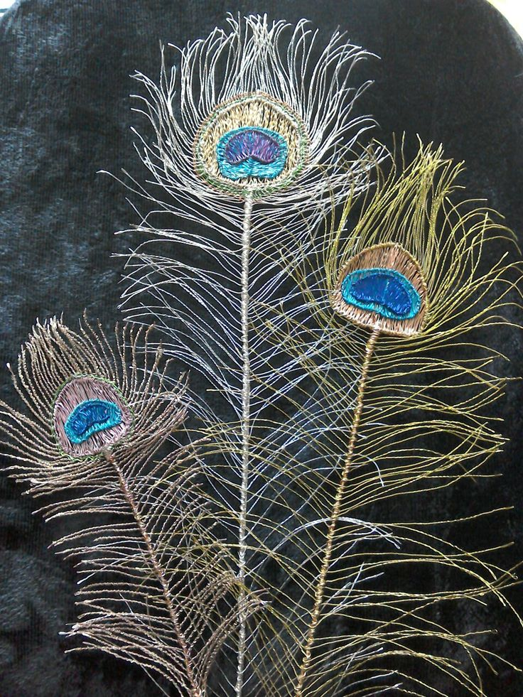 Wire Peacock Feathers