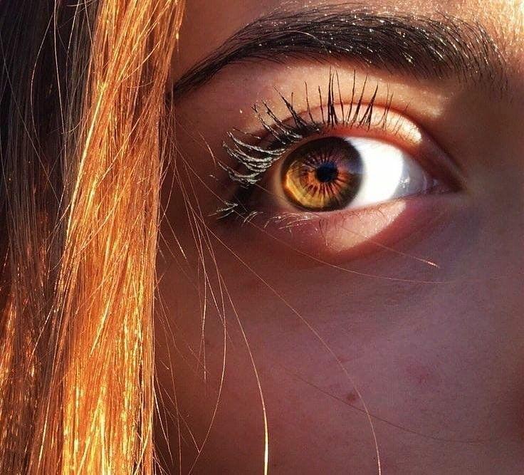 Kristhekiid Aesthetic Eyes Brown Eyes Aesthetic Beautiful Eyes Color