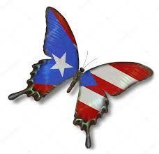 Image result for bandera de puerto rico