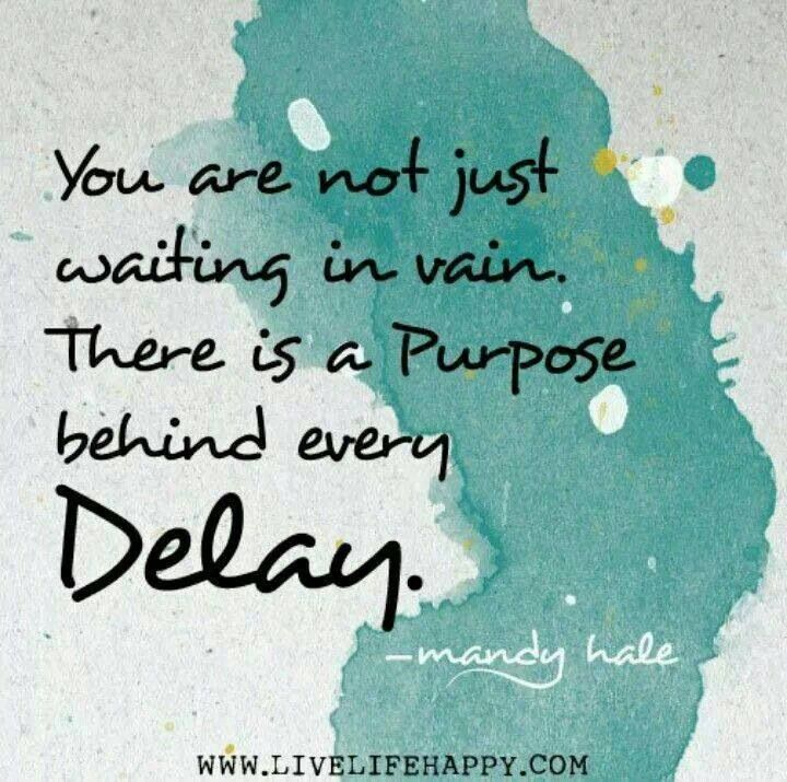 """You are not just waiting in vain. There is a purpose behind every delay."" -Mandy Hale"